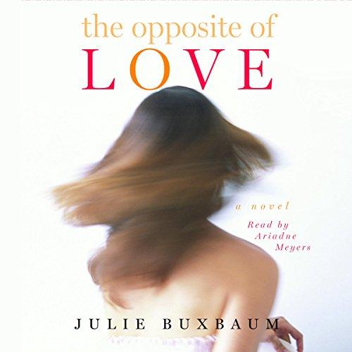 The Opposite of Love audiobook cover art