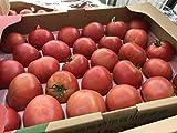 数量限定大放出! 熊本県産 トマト 甘くておいしい 2箱セット 約8キロ 残留農薬0