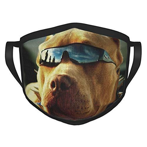 MDFE Pitbull - Funda facial para perros con gafas frías con gancho elástico para la oreja, lavable y reutilizable, protección de filtro para comodidad de moda