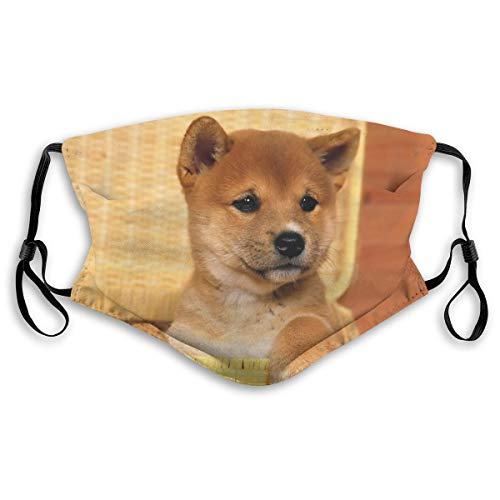 Yunshm Cute Shiba Inu Dust Washable Mouth Warm Windproof Face Cover with 2 Pcs Filter for Men Women Personalized