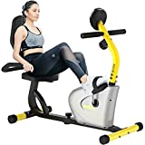 Pooboo Recumbent Bike