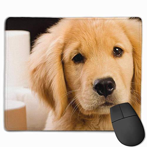 Nettes Gaming-Mauspad, Schreibtisch-Mauspad, kleines Mauspad für Laptop-Computer, Mausmatte Weiches, flauschiges Golden Retriever-Welpenhundehaus-geschultes Toilettenpapier