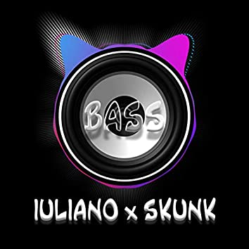 Bass (feat. Skunk)