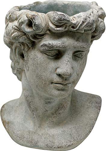 Pflanztopf Büste Adonis, Zement, grau, 22 cm, Blumentopf Kopf Antik Design Pflanzkopf