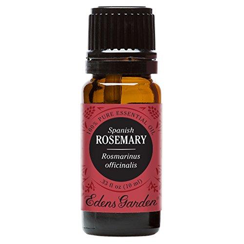 Edens Garden Rosemary Spanish Essential Oil, 100% Pure...