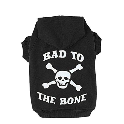 EXPAWLORER Black XXL Bad to The Bone Printed Skull Hoodie For Pugs