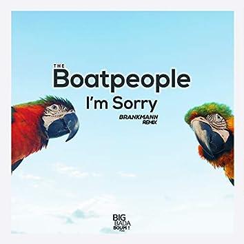 I'm Sorry (Brankmann Remix)