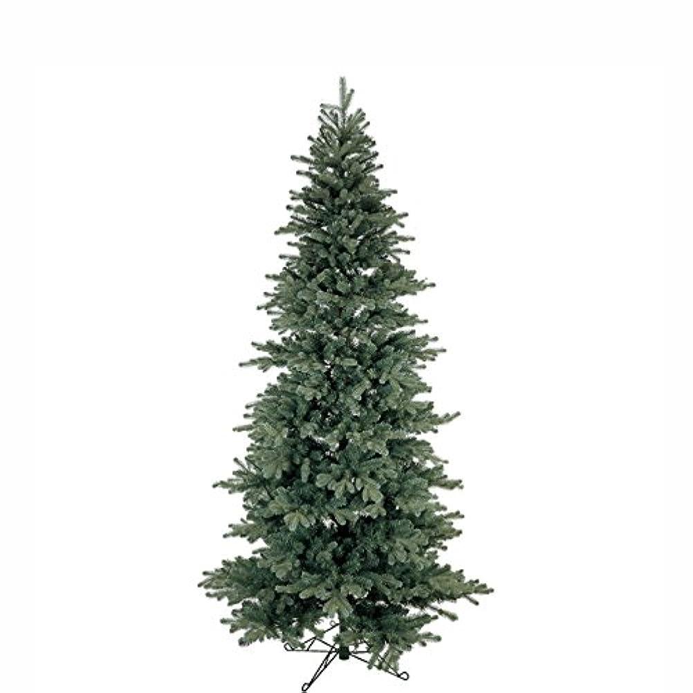 叱るつかむ平らにする東京堂 クリスマス グレイスカノンツリー5.5F   XV000335