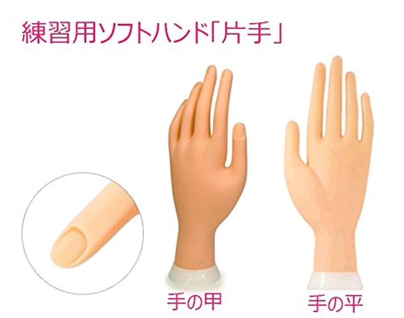 人気の軽蔑降下練習用ソフトハンド(左手)チップ差し込み式