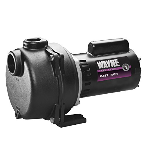 Wayne WLS200 2 HP Cast Iron High Volume Lawn Sprinkling Pump, 2-Horsepower