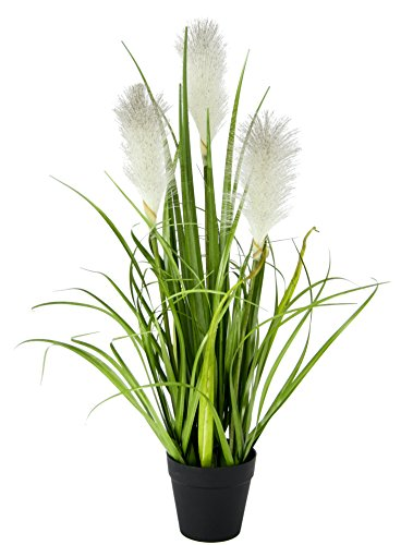 Flair Flower Pampas Topf Feder Ufergras Seidenblumen Grasbusch Dekogras Gras Kunstpflanzen Kunstgras künstliche Pflanzen Solitärgras Ziergras Dekopflanze 55 cm, Weiß