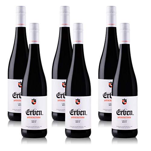 6 Flaschen Erben Spätburgunder Rotwein lieblich aus Rheinhessen QbA (6 x 0,75 l)