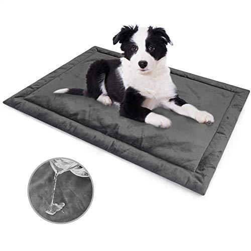 Allisandro Hond Bed Kat Kussen L 100x70cm Waterdicht Zacht Matras, Wasbaar Warm Huisdier Fleece Pad Mat Diep Grijs, XL, Grijs