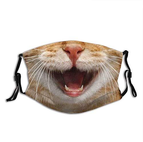 Mascarilla de cara de gato divertida con bolsillo de filtro, lavable, pasamontañas, máscara de tela reutilizable con 2 filtros de sonrisa, lindo gato para hombre y mujer