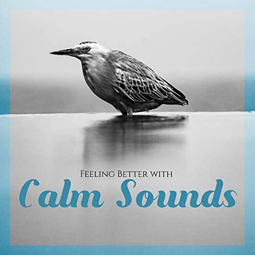 Best Relaxation Music & Soothing Music Academy