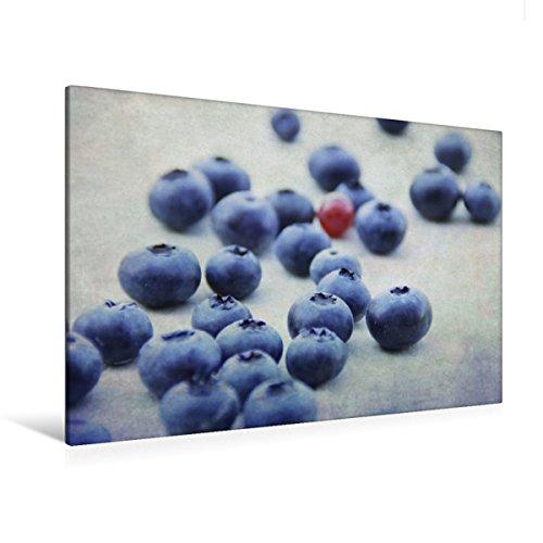 Premium Textil lienzo 120 cm x 80 cm horizontal, arándanos Fine Art - Cuadro sobre bastidor, imagen sobre lienzo auténtico, impresión sobre arándanos frescos en la lactancia (CALVENDO Salud)