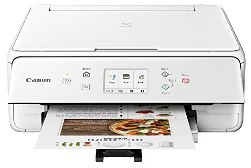 Canon PIXMA TS6220 Wireless All in One Printer with Mobile Printing, White, Works with Alexa