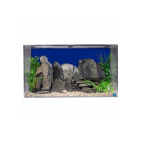 SeaClear 50 gal Acrylic Aquarium Combo Set, 36 by 15 by 20', Cobalt Blue