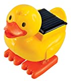 Solarbetriebene Ente Solarmodell Solar Bausatz