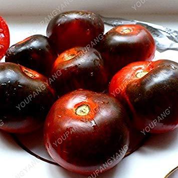 VISTARIC 7: 100pcs rond noir Aubergine Graines Heirloom légumes bio semences plantes non OGM pour le jardin bon goût riche en vitamines 7