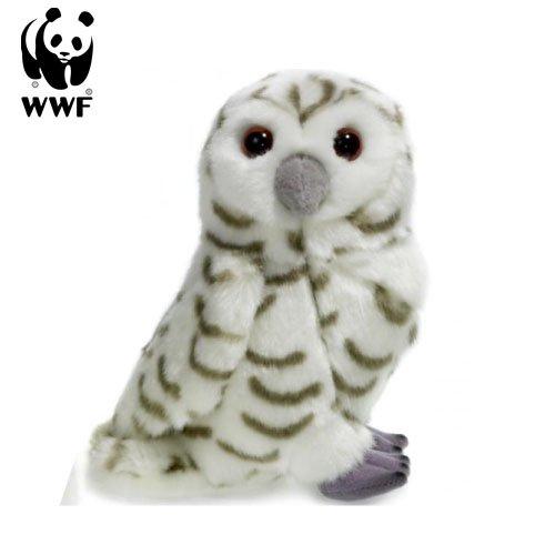 WWF Größe
