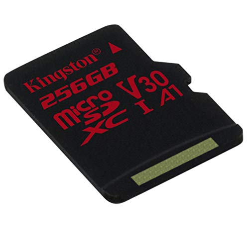 Kingston SDCR/256GBSP Scheda di Memoria Micro SD da 256 GB