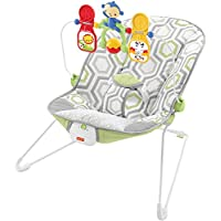 Fisher-Price Infant Soothing and Play Seat Baby Bouncer
