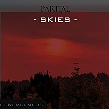 Partial Skies
