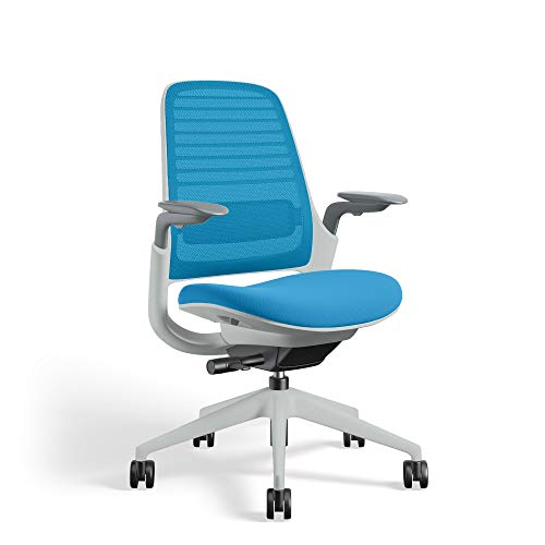 Series 1 Task Chair by Steelcase | Seagull Frame, Congent Connect Upholstery, 3D Microknit Back | Fully Adjustable Arms | Carpet Casters (Blue Jay)