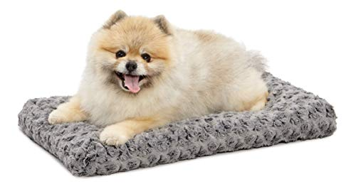 Large Dog Bed For Small Dogs