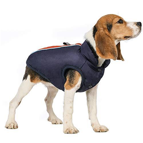 rabbitgoo Hundejacke Winter Wasserdicht Warm Hundemantel Gefüttert Mit Fleece Blau Fluoreszierende Orange Klein Hunde Welpen L