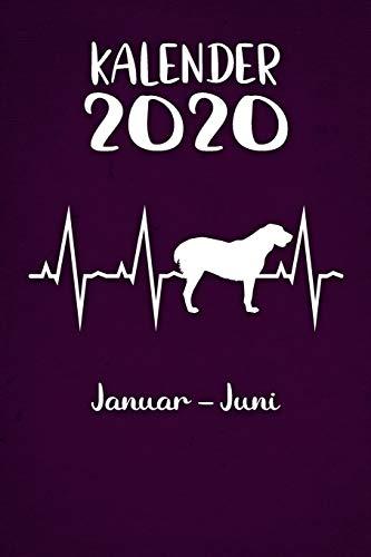 Kalender 2020: Lilaner Tageskalender Alabai Herzschlag Hunde 1. Halbjahr Januar Juni ca...