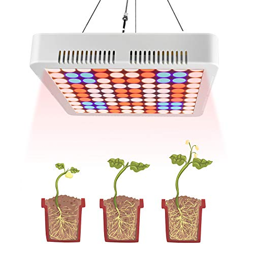 Aogled 1000W Grow Lights for Indoor Plants Full Spectrum,LED Panel Plant Light for Indoor Hydroponic,Greenhouse and Grow Tent,LED Growing Lamp for Seedling,Veg,Flower(80W LED Equivalent 1000W HPS/MH)