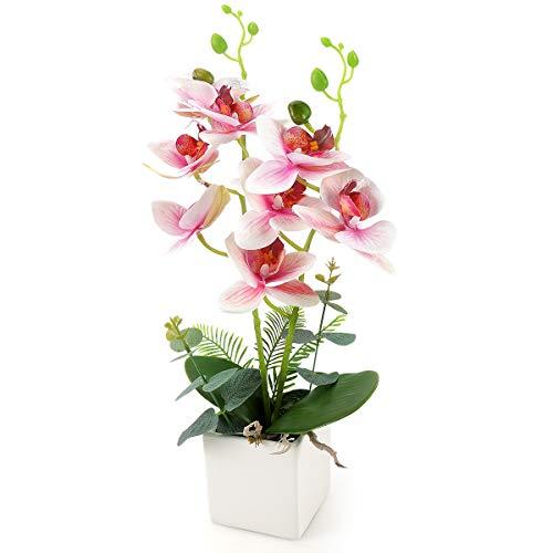 Yobansa Dekorative echte Berührung gefälschte Orchidee Bonsai künstliche Blumen mit Keramik Blumentöpfe Phalaenopsis Blumenarrangements für Home Decoration (Pink 0A)
