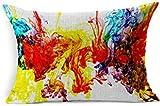 DarrenOw02 - Fundas de cojín rectangulares de colores arcoíris, color verde y azul vibrante con textura de humo, líquido marrón brillante, pigmento moderno rojo multicolor, 16 x 24 pulgadas, para sala de estar, sofá, decoración al aire libre