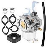 ARJ 715670 Carburetor Compatible with Briggs...