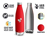 Aorin 500ml Trinkflasche (Traube Rot) - 8