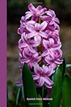 Hyacinth Flower Notebook: A Great Journal & Daily Diary, With a High Quality Cover Design, 120 Lined Pages, 6*9'' Dimensions.