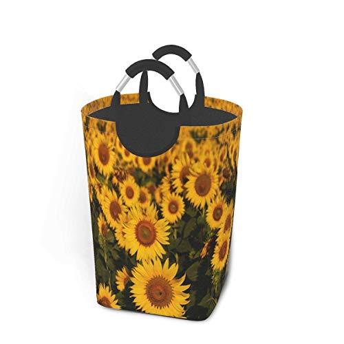 Cestas de lavandería plegables, cesto de ropa sucia, campos de girasol con flores florecientes, cestas de lavandería plegables, asas de metal, cesto de lavandería plegable para dormitorio, tel