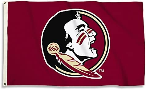 BSI NCAA College Florida State Seminoles 3 X 5 Foot Flag with Grommets product image