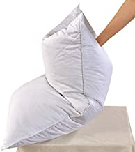 Set of 2 White Goose Feather Bed Pillows - 600 Thread Count Egyptian Cotton, Medium Firm,Soft Support Queen Size,White Solid (Queen Size:2 Pillows)