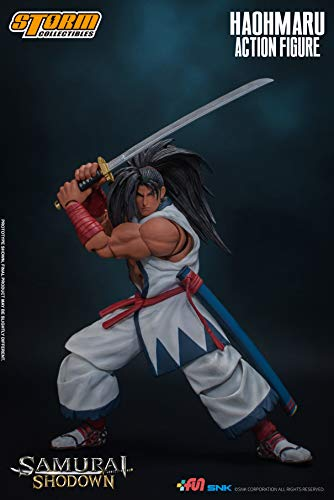 Haohmaru Samurai Shodown, Storm ...