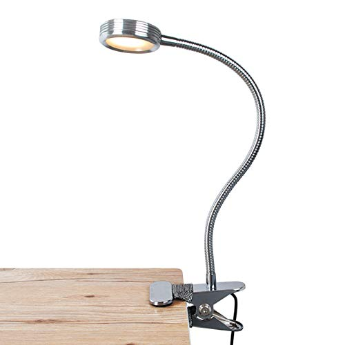 LEPOWER Clip on Light/Clip on Lamp/Light Color Changeable/Night Light Clip on for Desk, Bed Headboard and Computers (Silver)