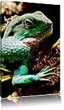 Dark großes grünes Chamäleon Deluxe Format: 80x60 cm auf