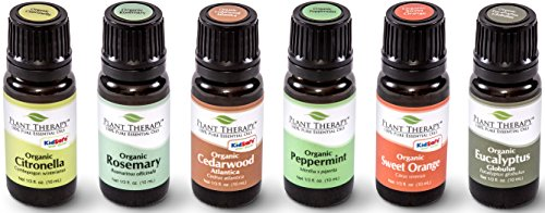 Plant Therapy Organic Essential Oil Sampler Gift Set in Wooden Box. Includes USDA Certified Organic: Eucalyptus, Peppermint, Rosemary, Cedarwood, Sweet Orange and Citronella. 10 mL (1/3 Ounce) each.