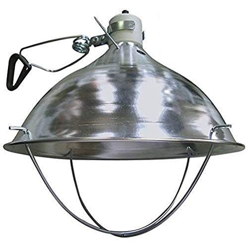Rite Farm Products Deluxe with CLAMP BROODER LAMP Fixture for Chicken COOP Hen House Chick Warmer Heat Light