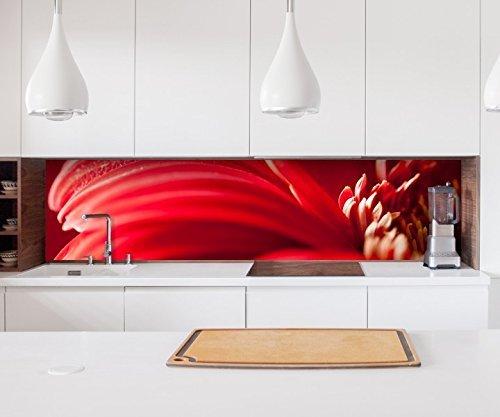 Aufkleber Küchenrückwand rote Blume Gerbera Leidenschaft rot Folie selbstklebend Dekofolie Fliesen Möbelfolie Spritzschutz 22A911, Höhe x Länge:60cm x 150cm
