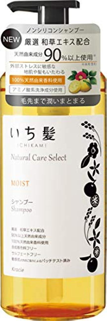 ポータル予算省略いち髪ナチュラルケアセレクト モイスト(毛先まで潤いまとまる)シャンプーポンプ480mL シトラスフローラルの香り