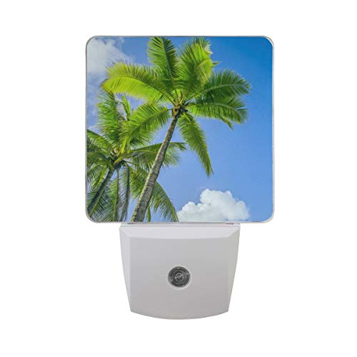AOTISO Palmboom in Bright Blue Sunny Sky met White Cloud Auto Sensor Night Light Plug in Indoor