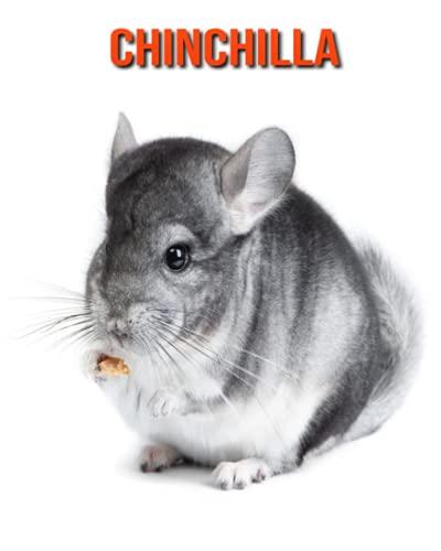 Chinchilla: Libro para niños con imágenes hermosas y datos interesantes sobre los Chinchilla